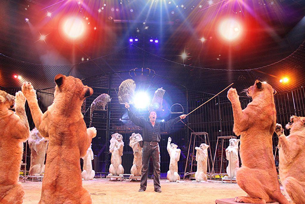 Circus Krone für Kinder